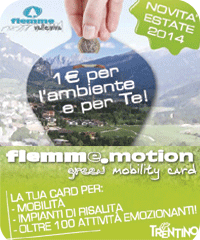 Fiemem Motion card 2014