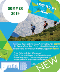 Fiemme Motion CARD Sommer 2019