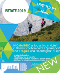 Fiemme Motion CARD Estate 2019