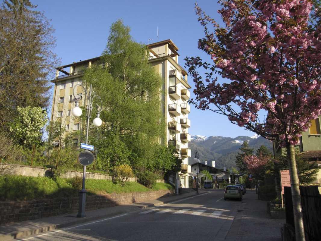 Offerta Last Minute Appartamento a Cavalese - Signora Giuditta - Via Via Libertà 13 - Tel 3480341996