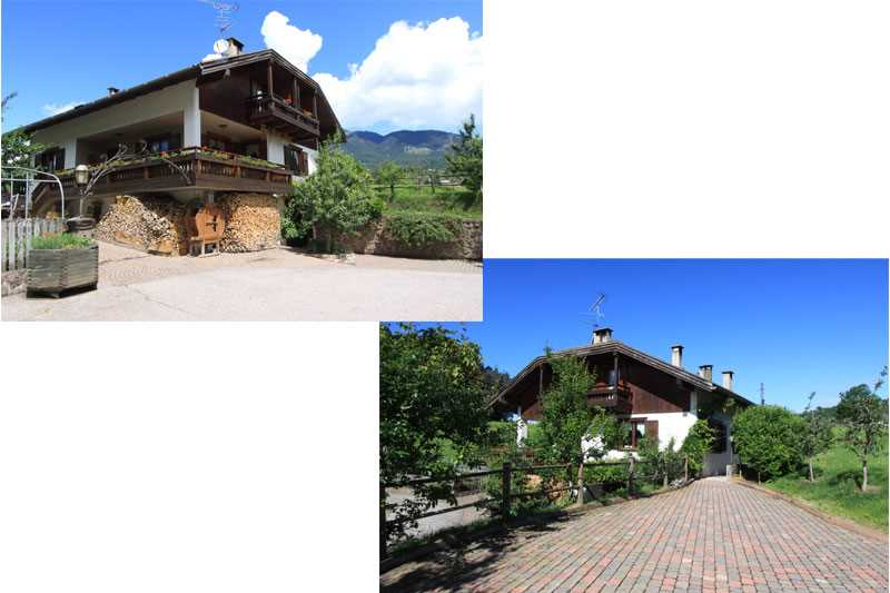 Offerta Last Minute Appartamento a Cavalese - Signora Renata - Via Via Pillocco 3 - Tel 0462871318